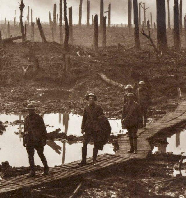 1917 - Immagine 3