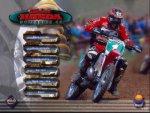 Silkolene Honda Motocross GP - Immagine 1