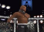 Ultimate Fighting Championship - Immagine 1
