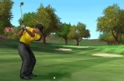 Tiger Woods 2005 - Immagine 4
