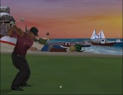 Tiger Woods 2005 - Immagine 7