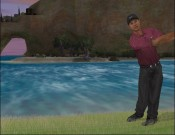 Tiger Woods 2005 - Immagine 8