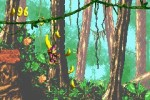 Donkey Kong Country 2 - Immagine 7