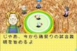 Harvest Moon: Friends of Mineral Town - Immagine 6