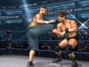 Wrestlemania XXI - Immagine 2