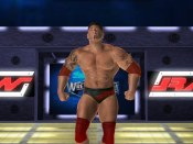 Wrestlemania XXI - Immagine 3