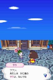 Animal Crossing: Wild World - Immagine 1