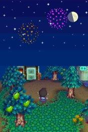 Animal Crossing: Wild World - Immagine 2