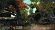 The Elder Scrolls IV: Shivering Isles - Immagine 2