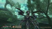 The Elder Scrolls IV: Shivering Isles - Immagine 7