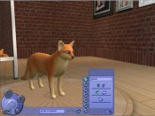 The Sims: Pet Stories - Immagine 3