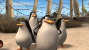 Madagascar 2: Escape to Africa - Immagine 9