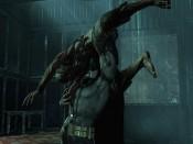 Batman Arkham Asylum G.O.T.Y. - Immagine 3