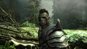 The Elder Scrolls V: Skyrim - Immagine 7