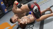 UFC Undisputed 3 - Immagine 5