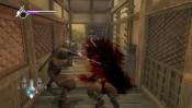 Ninja Gaiden Sigma - Immagine 3