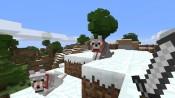 Minecraft - Immagine 3