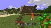Minecraft - Immagine 5
