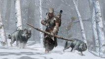 Assassin's Creed 3: La Tirannia di Re Washington - Immagine 4