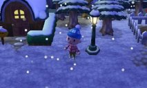 Animal Crossing New Leaf - Immagine 3