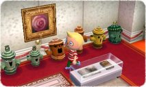 Animal Crossing New Leaf - Immagine 9