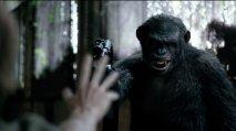 Apes Revolution: Il Pianeta delle Scimmie - Immagine 4