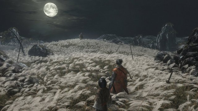Sekiro: Shadows Die Twice - Immagine 2