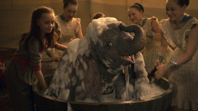 Dumbo - Immagine 2