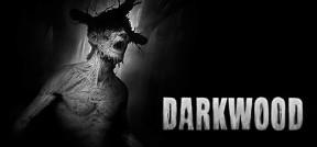 Darkwood PC Cover