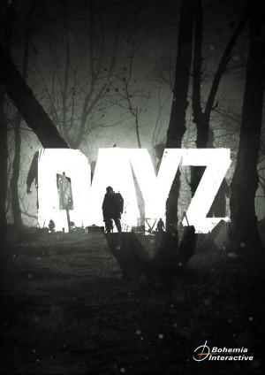 Copertina DayZ - PC