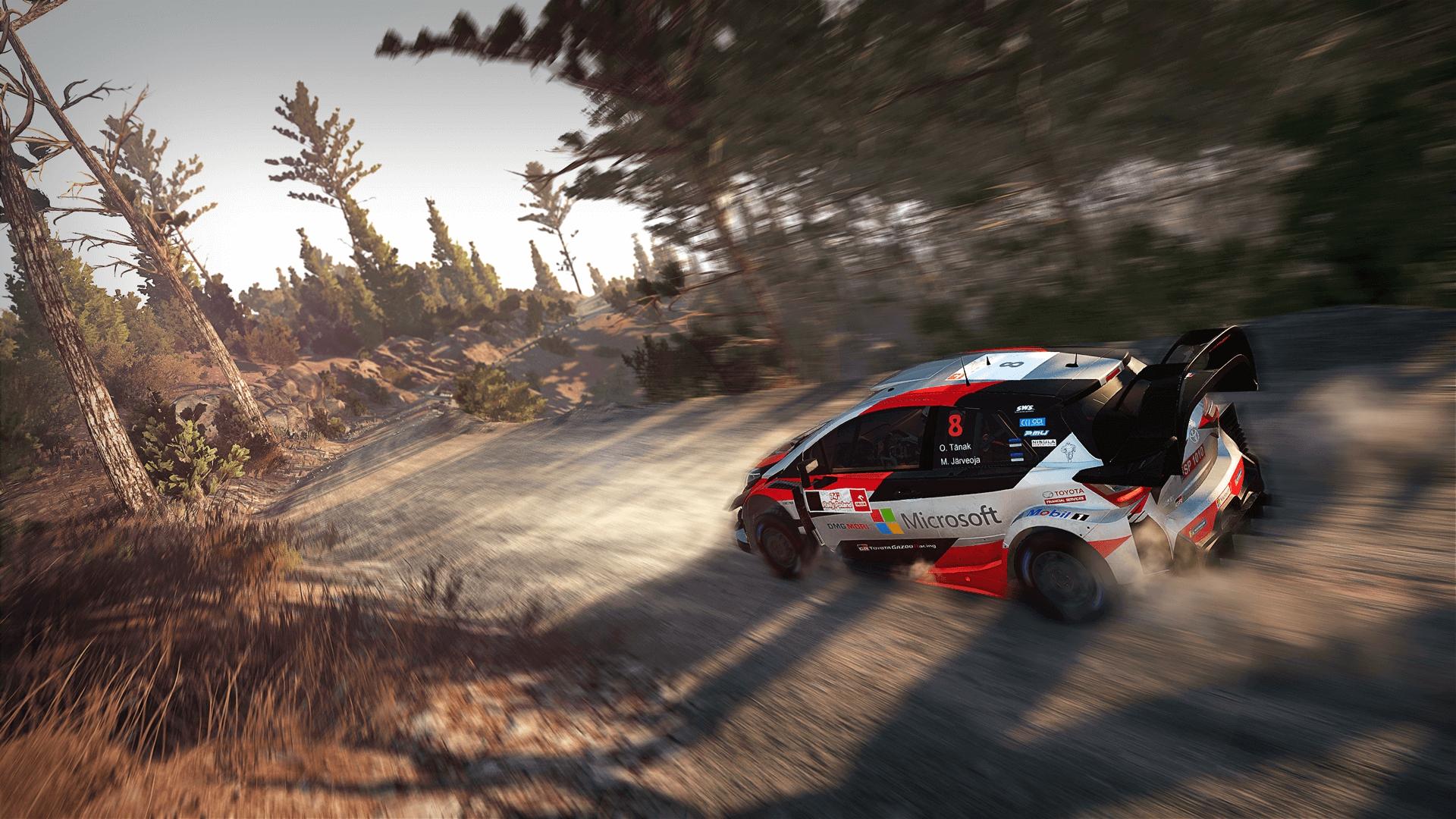 Recensione WRC 8