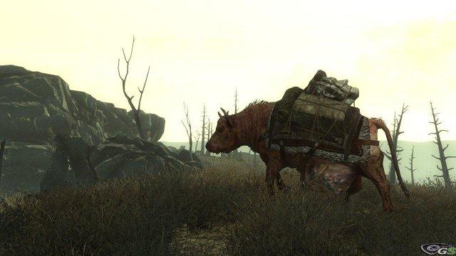 Fallout 3 - Immagine 6271