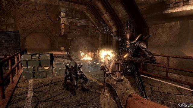Aliens vs Predator - Immagine 23555