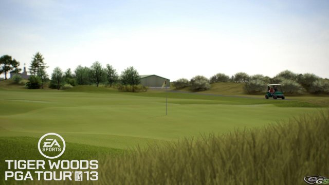 Tiger Woods PGA Tour 2013 immagine 53450