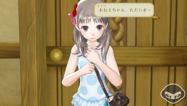 Atelier Totori Plus immagine 68374