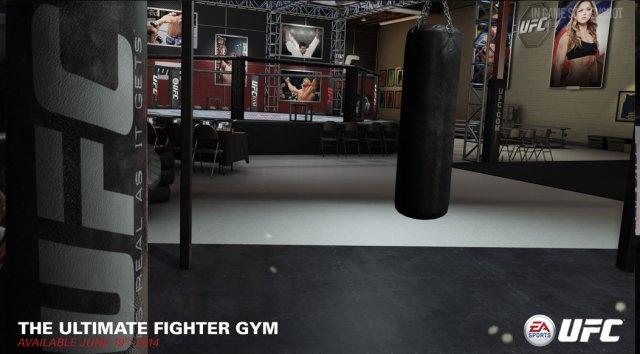 EA Sports UFC immagine 112548