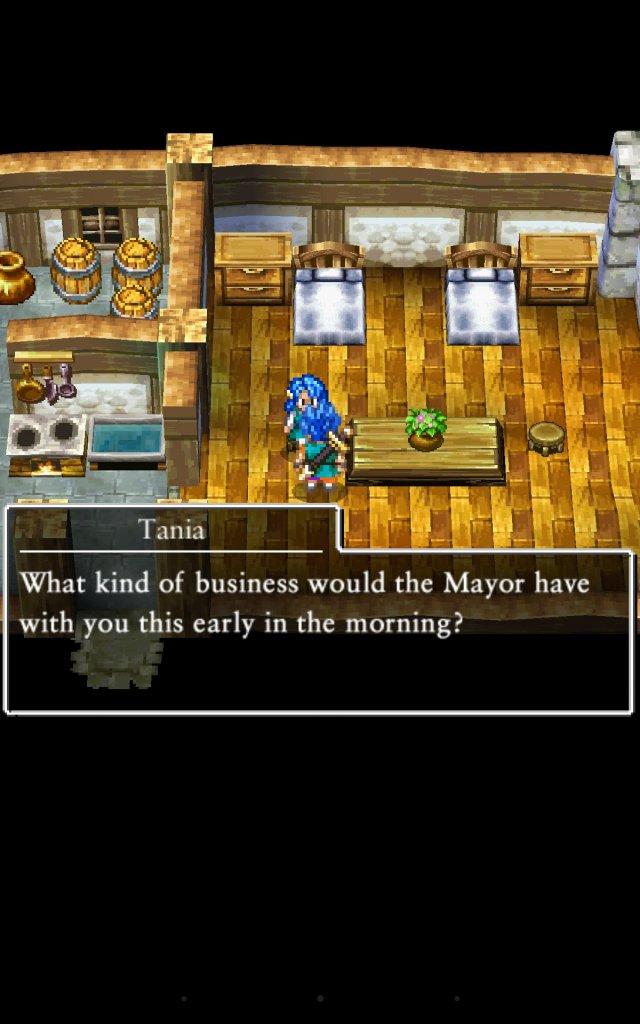 Dragon Quest VI: Realms of Revelation - Immagine 157837