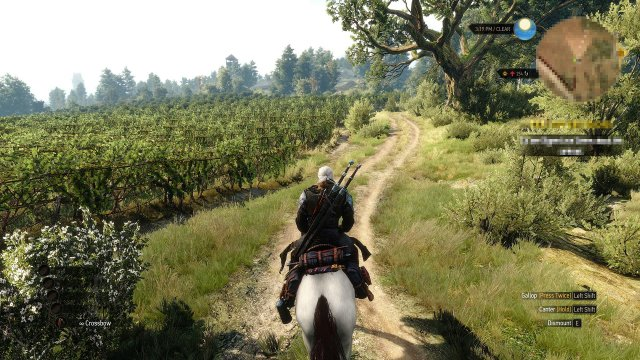 The Witcher 3: Hearts of Stone immagine 165176