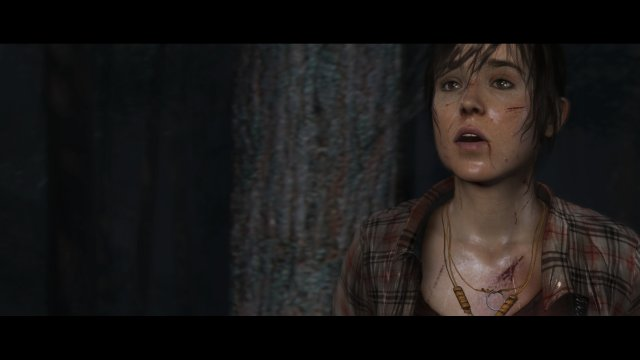 The Heavy Rain and Beyond: Two Souls Collection - Immagine 170117