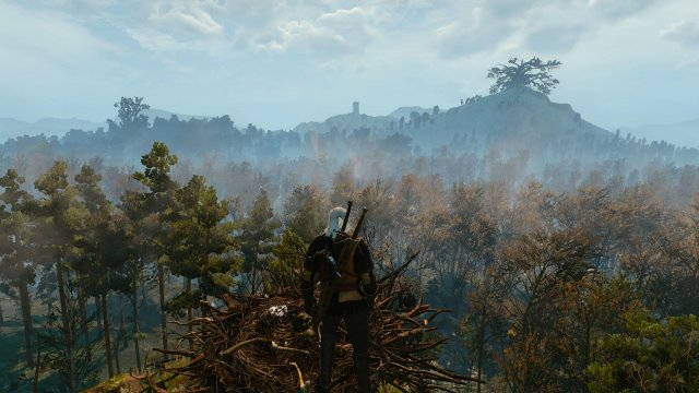 The Witcher 3: Wild Hunt immagine 152485