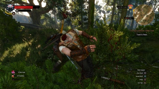 The Witcher 3: Wild Hunt immagine 152495