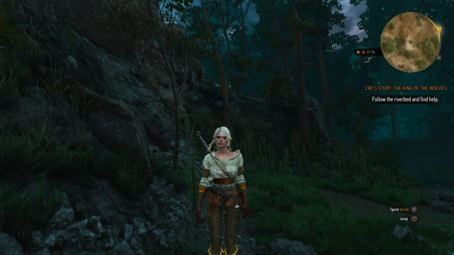 The Witcher 3: Wild Hunt immagine 152500