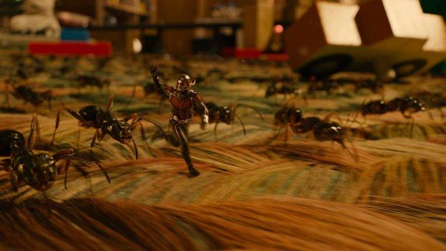 Ant-Man - Immagine 159166