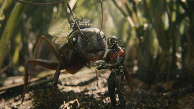 Ant-Man - Immagine 159172