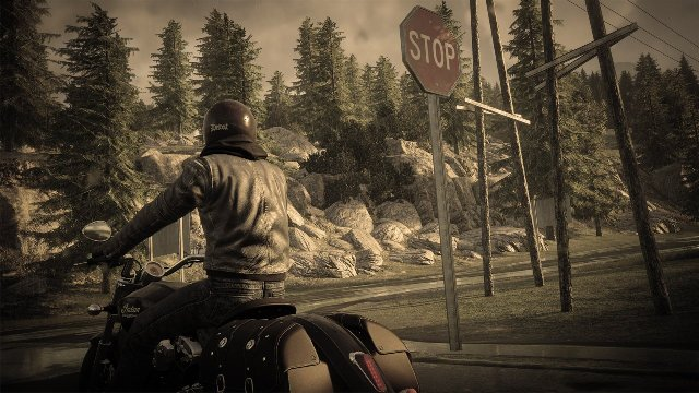 The Crew: Wild Run - Immagine 174008