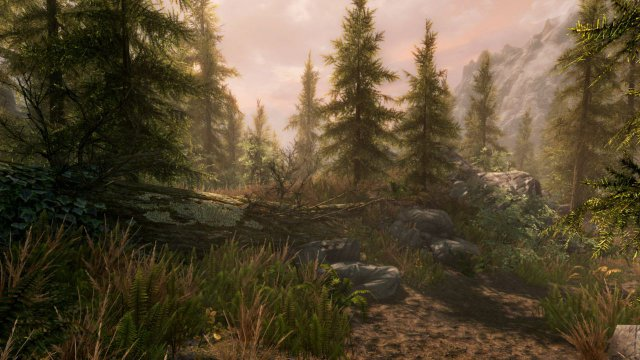 The Elder Scrolls V: Skyrim - Special Edition immagine 186335