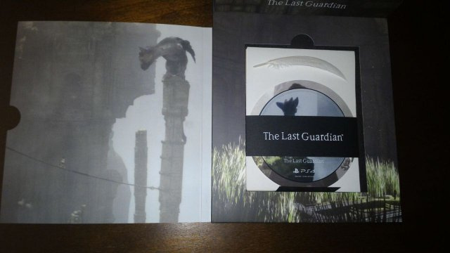 The Last Guardian - Immagine 197142