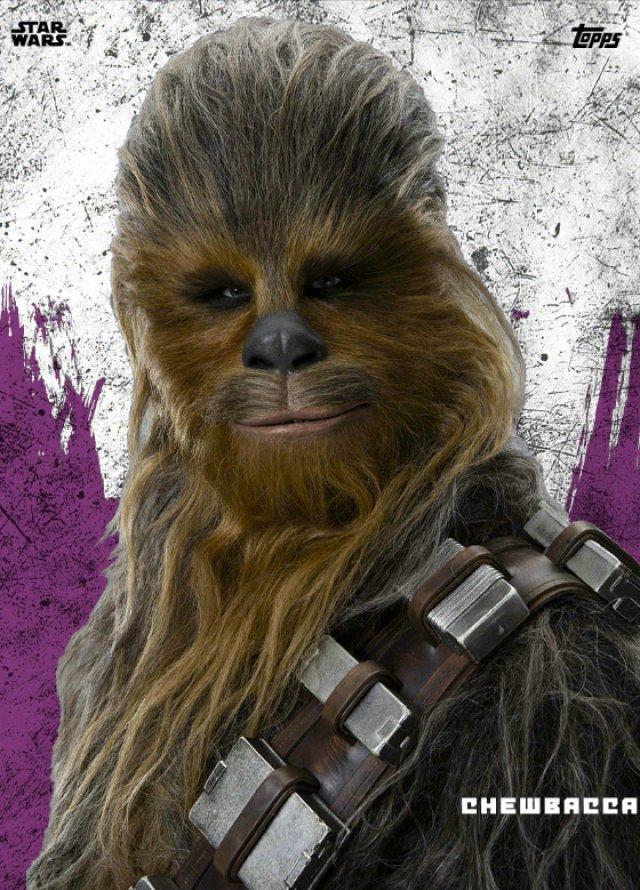 Star Wars: Gli Ultimi Jedi - Immagine 204534