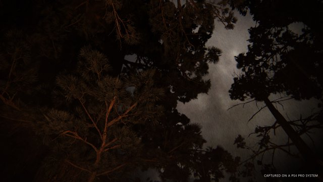 The Last of Us Part II - Immagine 18 di 19