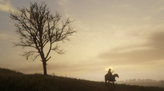 Red Dead Redemption 2 - Immagine 211696